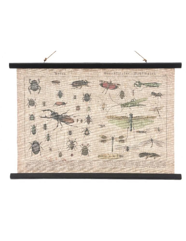 Tableau en toile vintage insecte MARCEL DMR3889046Decoris