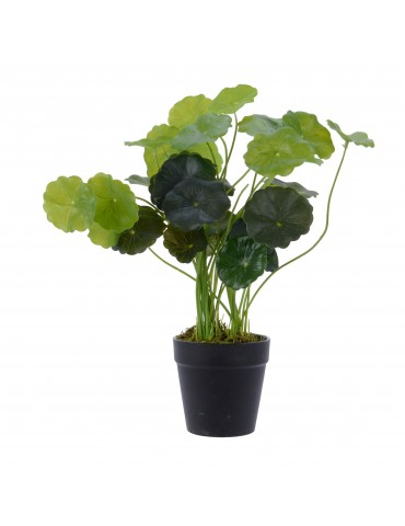 Plante artificielle centella asiatica en pot DAA4063275
