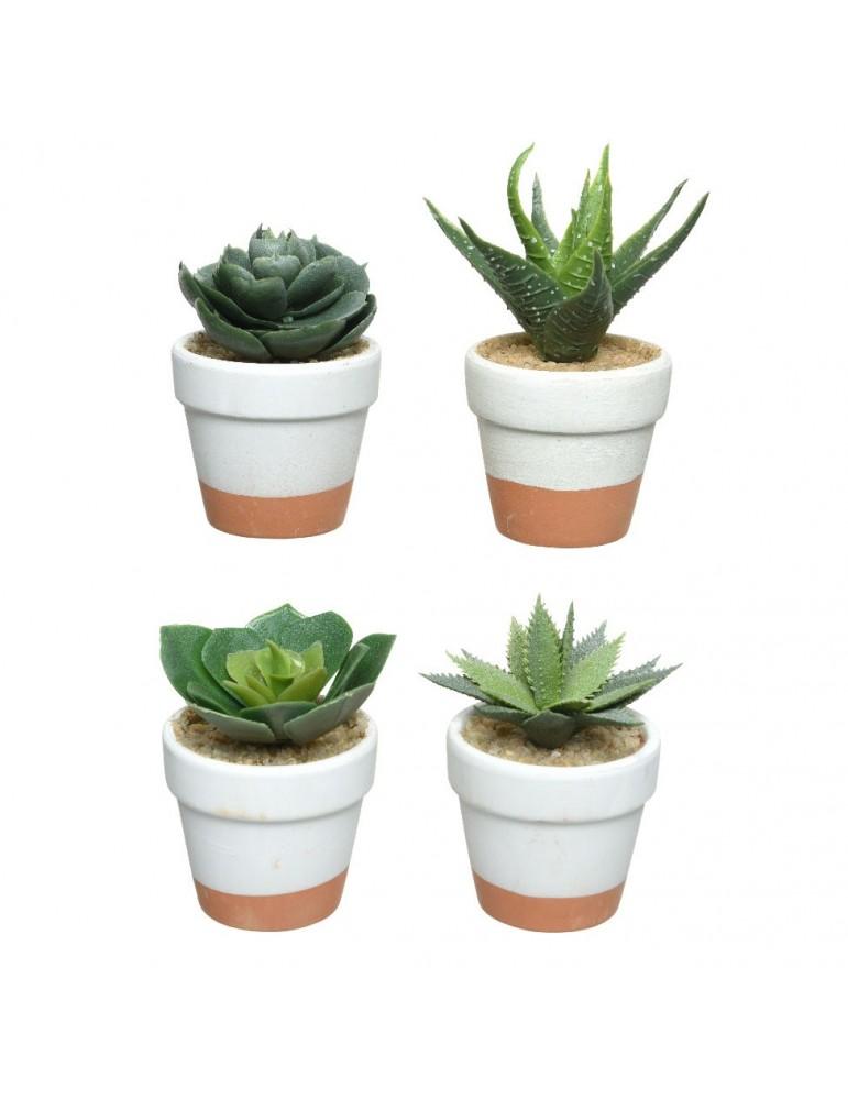 Plante grasse artificielle en pot terracotta - Set de 4 DAA4248011Decoris