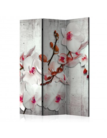 Paravent 3 volets - Concrete Orchid [Room Dividers] A1-PARAVENT587
