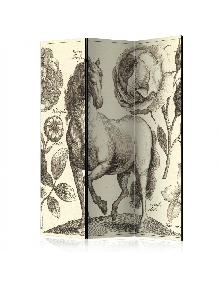Paravent 3 volets - Horse [Room Dividers] A1-PARAVENT750