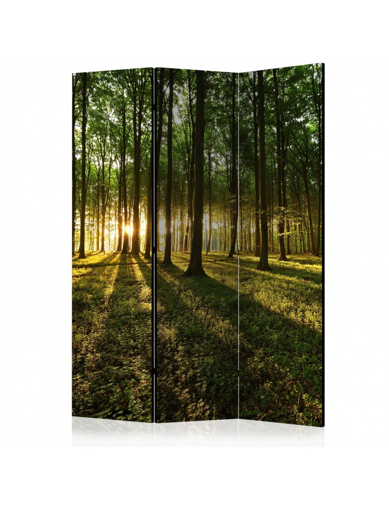 Paravent 3 volets - Morning in the Forest [Room Dividers] A1-PARAVENT200