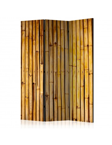 Paravent 3 volets - Bamboo Garden [Room Dividers] A1-PARAVENT645