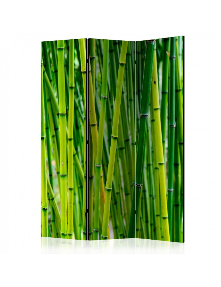 Paravent 3 volets - Bamboo Forest [Room Dividers] A1-PARAVENT993