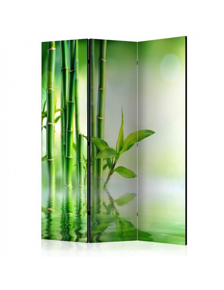Paravent 3 volets - Green Bamboo [Room Dividers] A1-PARAVENT943
