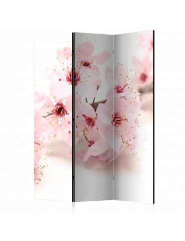 Paravent 3 volets - Cherry Blossom [Room Dividers] A1-PARAVENT947