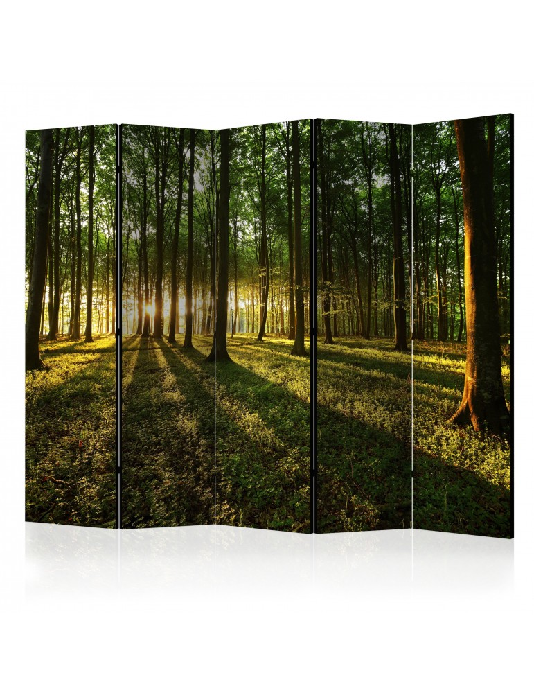 Paravent 5 volets - Morning in the Forest II [Room Dividers] A1-PARAVENT201