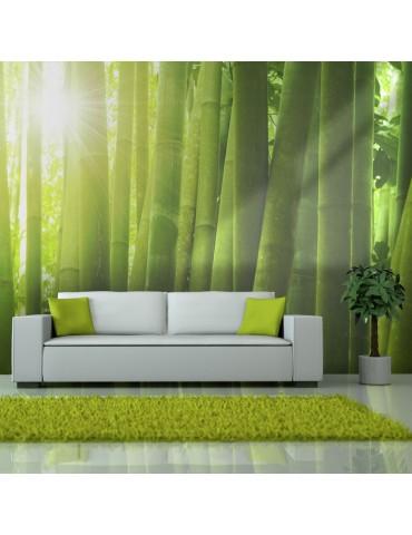 Papier peint - Soleil et bambou A1-F4TNT0501-P