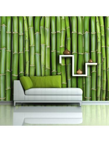 Papier peint - Mur vert bambou A1-F4TNT0451-P
