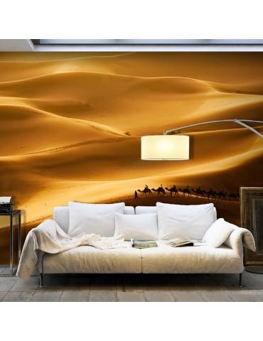 Papier peint - Caravane de chameaux A1-F4TNT0500-P