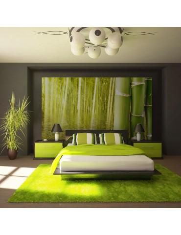 Papier peint - Ambiance exotique - bambou A1-F4TNT0443-P