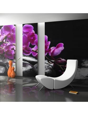 Papier peint - Moment de détente : orchidée et pierres zen A1-F4TNT0461-P