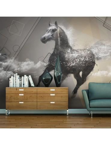 Papier peint - Escape into dreams A1-F4TNT0523