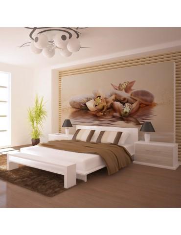 Papier peint - plage - nénuphars A1-F4TNT0167-P
