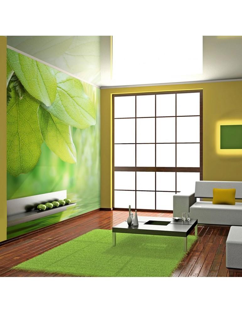Papier peint - Feuilles vertes - fraîcheur A1-LFTNT0124