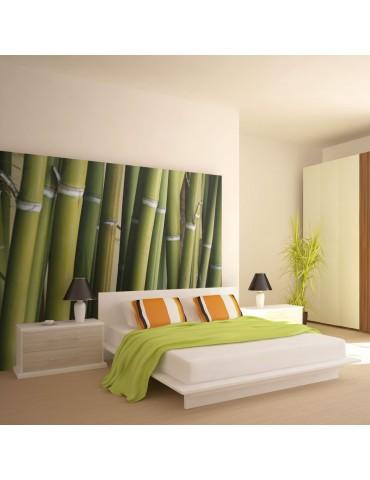 Papier peint - décoration zen - bambou A1-LFTNT0172