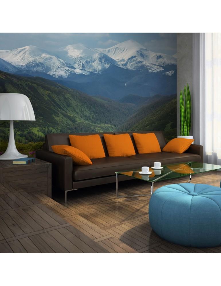 Papier peint - Paysage de montagne au printemps A1-LFTNT0902