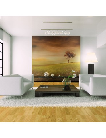 Papier peint - Arbre solitaire A1-LFTNT0968