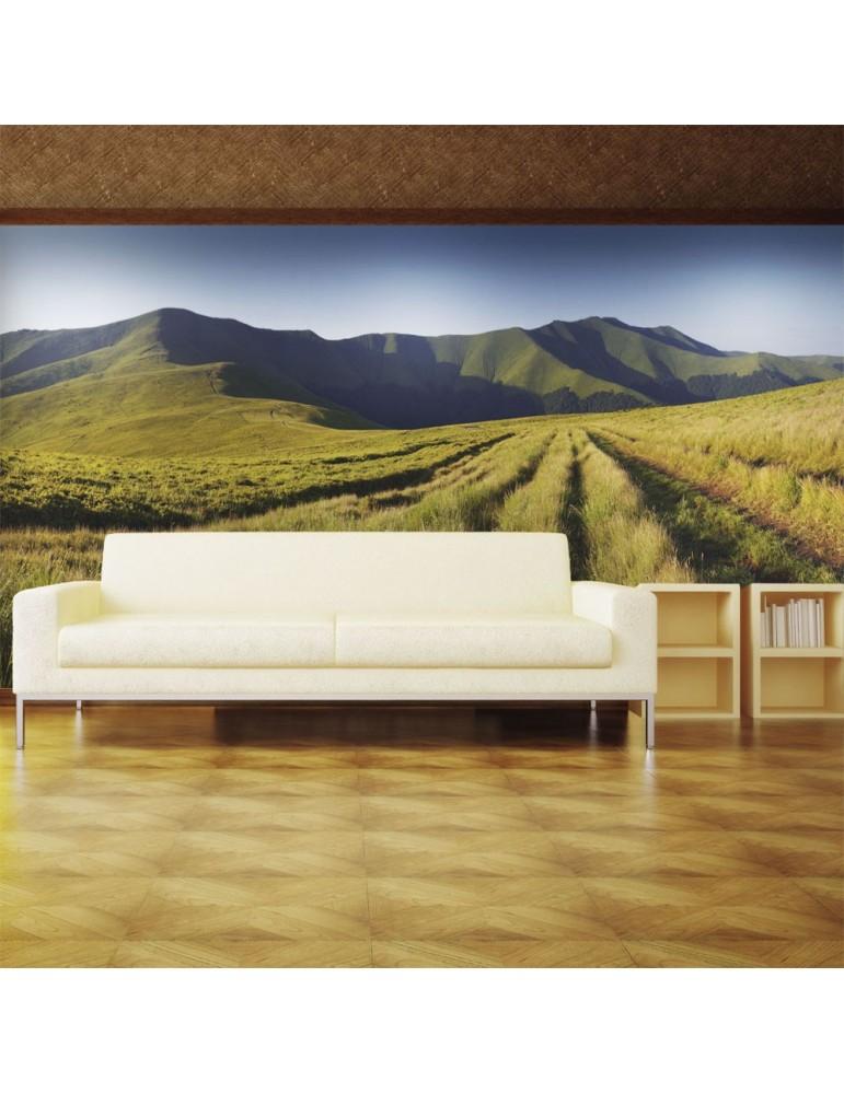 Papier peint - Paysage de montagne A1-LFTNT0984
