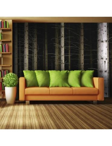 Papier peint - Deep dark forest A1-LFTNT0987