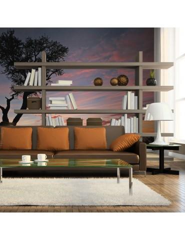 Papier peint - Silhouette d'acacia au coucher de soleil A1-LFTNT1010