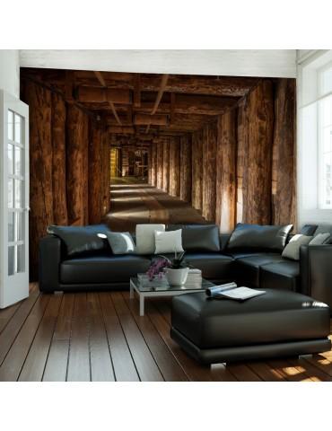 Papier peint - Wooden passage A1-LFTNT1077