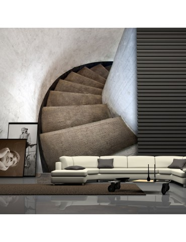 Papier peint - Escaliers à vis A1-LFTNT1163