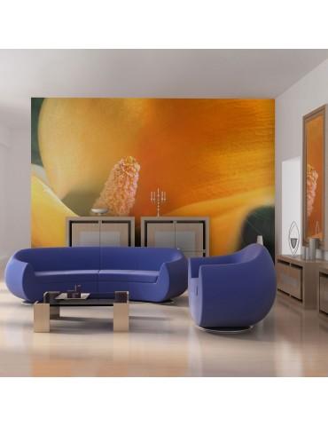 Papier peint - Yellow calla lily A1-LFTNT1281