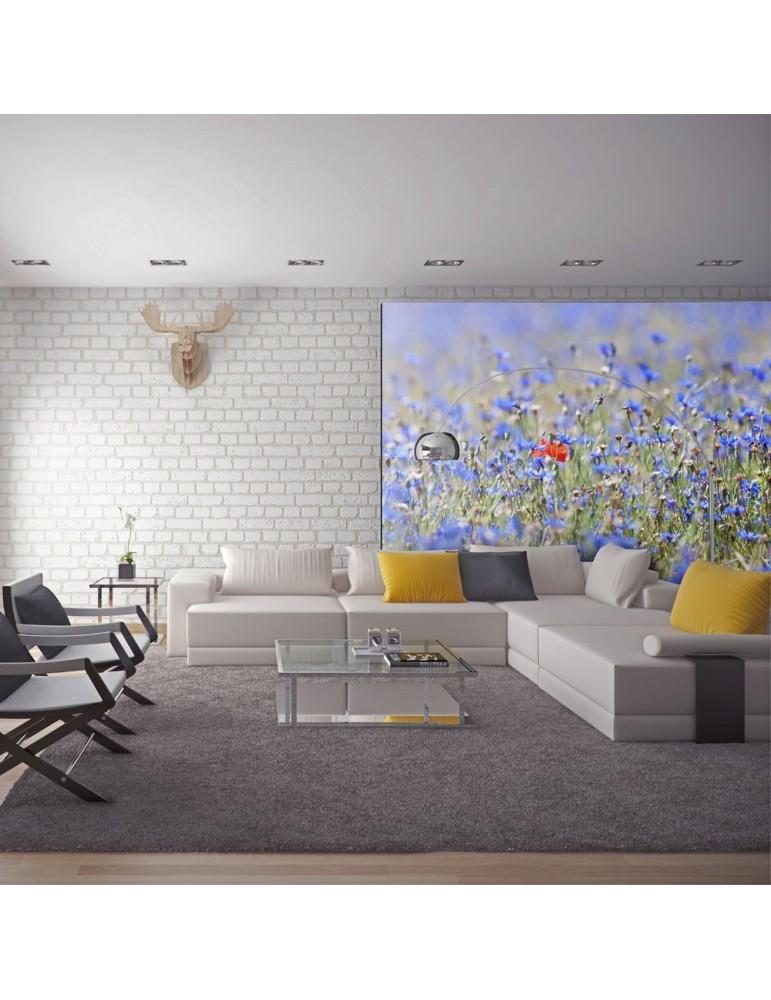 Papier peint - Prairie aux couleurs du ciel - bleuets A1-LFTNT1285
