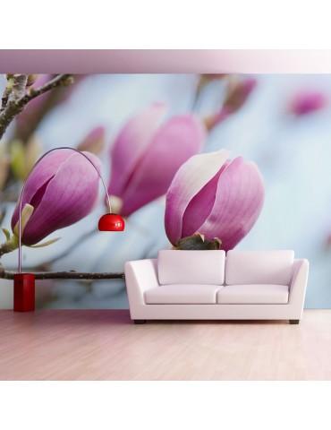 Papier peint - printemps - magnolia A1-LFTNT1371