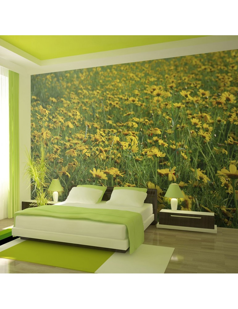 Papier peint - Champ de fleurs jaunes A1-LFTNT1401