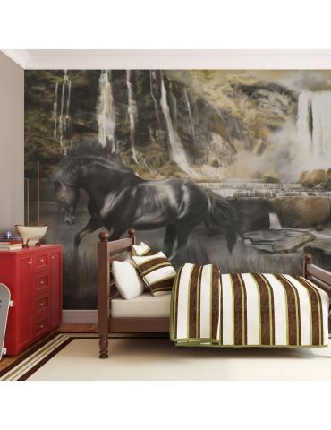 Papier peint - Cheval noir A1-LFTNT0766