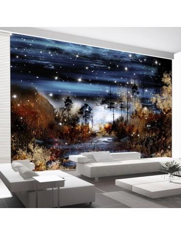 Papier peint - Magical forest A1-XXLNEW010848