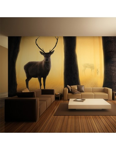 Papier peint XXL - Deer in his natural habitat A1-F5TNT0032-P