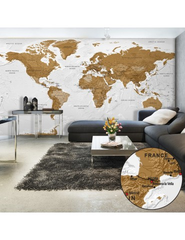 Papier peint XXL - World Map: White Oceans II A1-500x280new1369