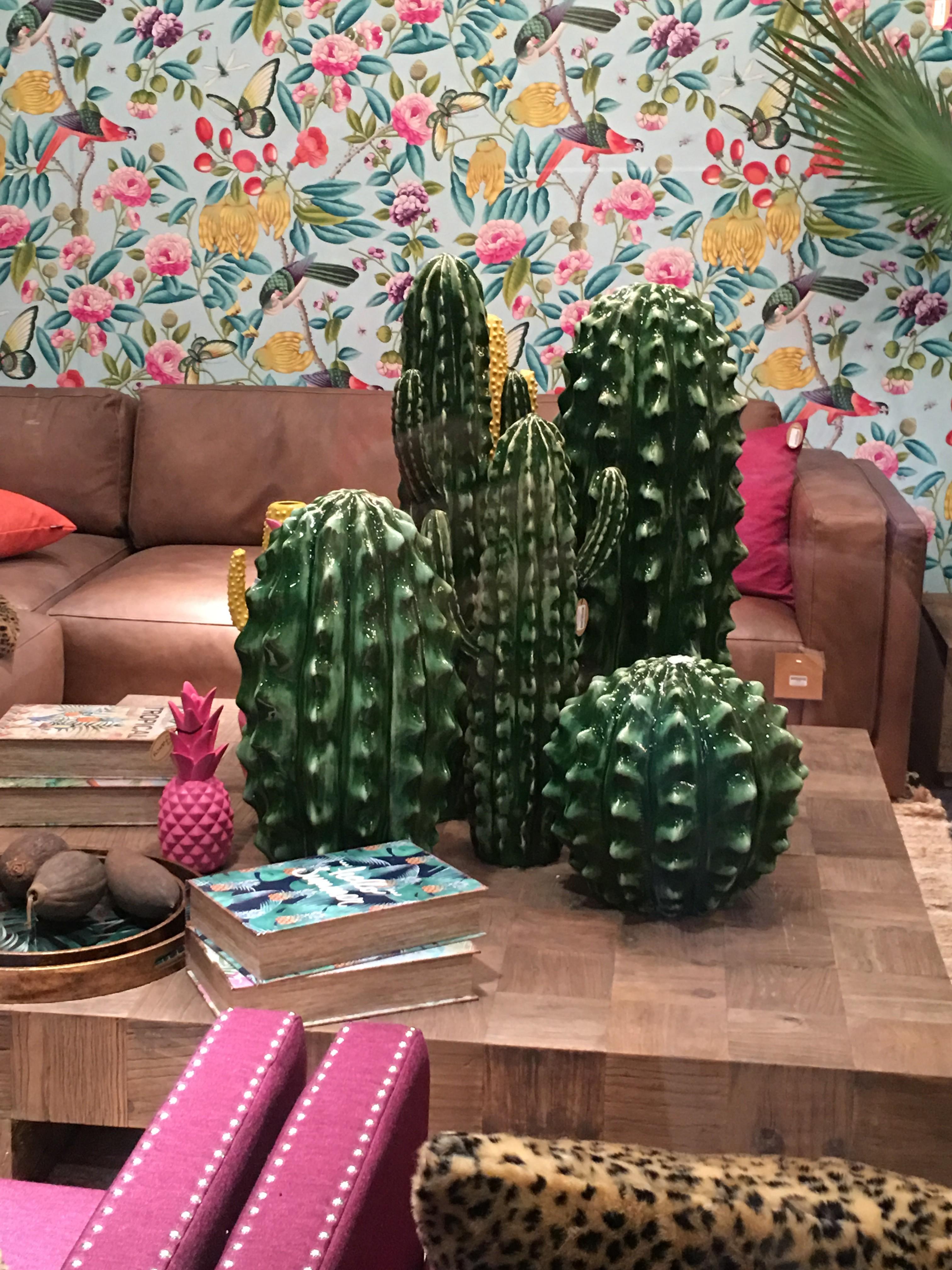 cactus en céramique sur table basse
