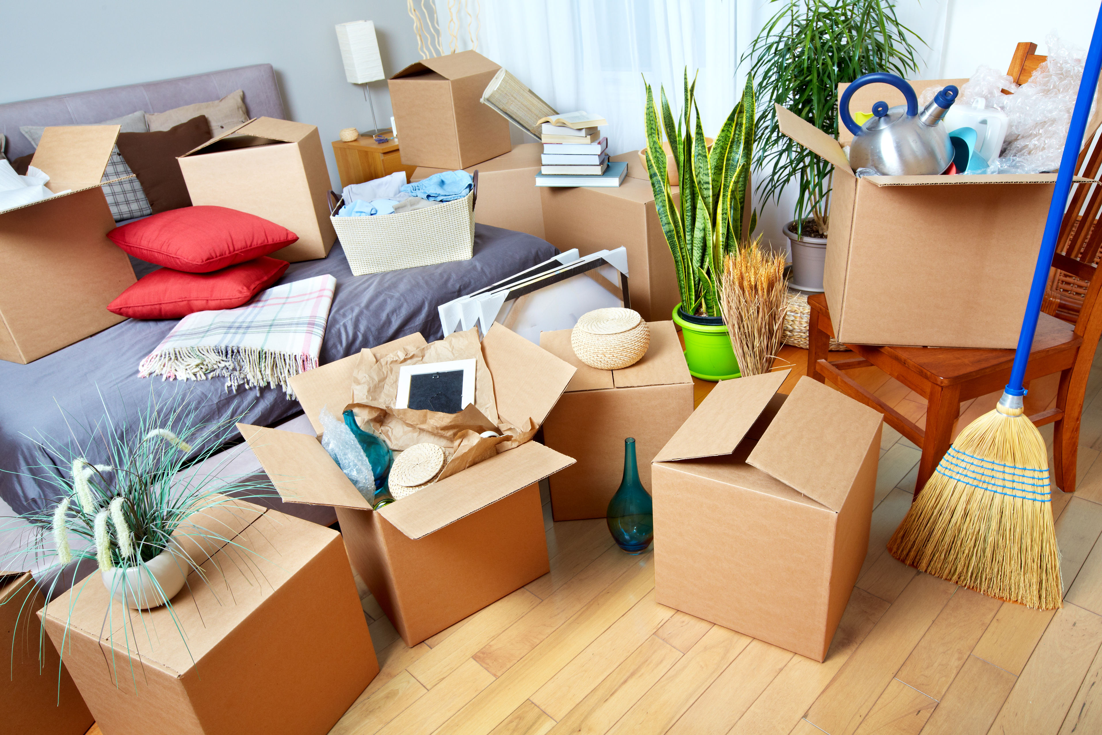 cartons de déménagement prime